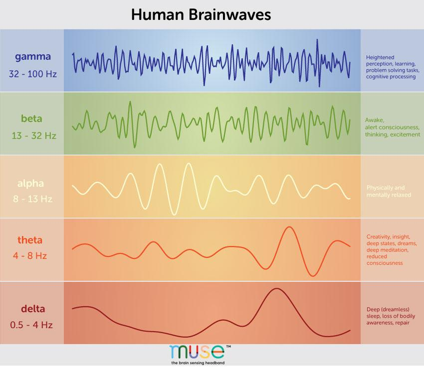 Photo of brainwaves correlating to different mental states